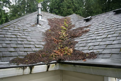 Snow Removal General Maintenance Roofers Nh Vt Upper